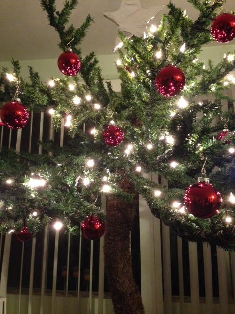 Christmas Pam Tree 1 photo