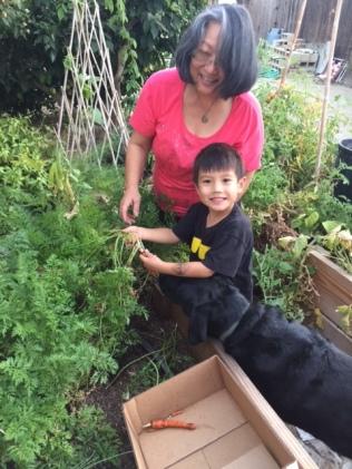 thomas-mama-sadie-and-carrots-img_0505